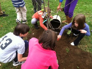 Tree Planting at Wildwood