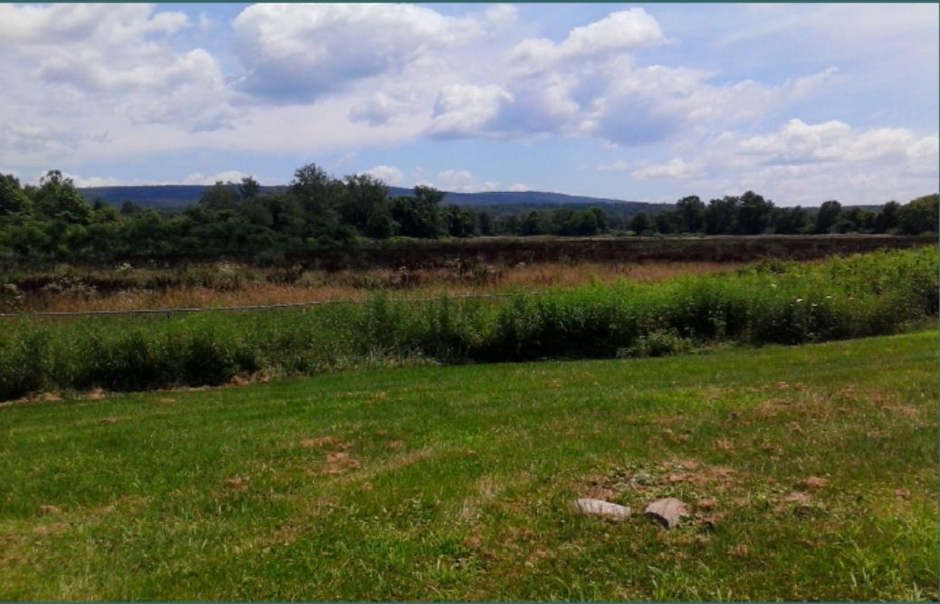 The proposed property in East Amherst near the Fort River School